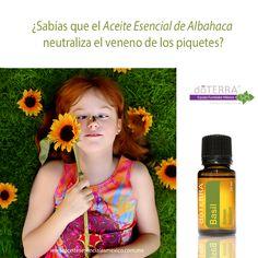 Elimina los piquetes de moscos y mosquitos con aceites esenciales doTERRA. Visita nuestra tienda en línea, hacemos envíos a todo México. Quiero formar parte de doTERRA? Adquiere tu membresía en nuestro sitio.
