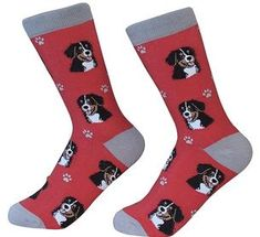 Bernese Mountain Dog Unisex SocksYou are absolutely going to love these Bernese Mountain Dog socks! There are so many reasons! These socks are high-qua Bernese Mountain, Mountain Dogs, Dog Socks, Crew Socks, Body Sock, Puppy Face, Novelty Socks, Dog Paws, Fur Babies
