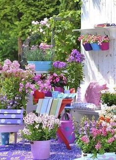 Lovely country flower garden