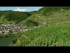 Mosel Region Wine tourism in Germany