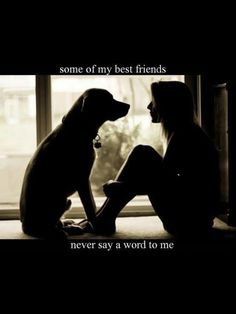 aww...❤️❤️❤️ #dog #dogs #dogsperts #pets #love #doglovers #cute #cuteness #cuteanimals #puppies #pup #pups #happydog #fun #happiness #dogquotes