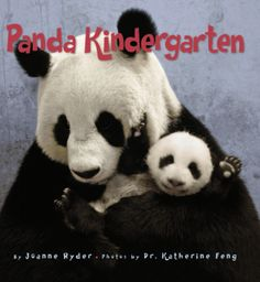 Panda Kindergarten Joanne Ryder 0060578505 9780060578503 School is in session! But this is no ordinary kindergarten class. Meet sixteen young giant panda cubs at the China Conservation and Research Center for the Giant Panda at th Summer Reading Lists, Thing 1, Mcgraw Hill, Kindergarten Class, Reading Levels, School Counseling, Cubs, Childrens Books, Kid Books