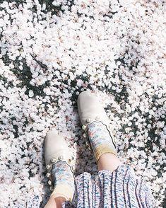 恋セヨ乙女  桜は自分の気分によってとても見え方が変わる 4月生まれの私にとってさくらという名前になる予定だった私にとって桜は特別な花で見ているだけで沢山パワーをくれる  ただ今年は桜がとても切なく見えて眺めていると何故か涙が出そうになってとても苦しかった  忙しいことを言い訳に桜を全く見ずにパソコンの画面ばかりを見て過ごしていたら そのかちゃんに仕事は置いて今すぐ見に行ったほうがいいよ桜は今しか咲かないんだよ と言われて確かにとそのまっすぐな言葉を素直に受け止めた私は桜が散る直前仕事を投げ出して急いで自転車に乗って桜を探す旅に出たんだ  青い空に咲く桜を見るのは苦しかったけど地面に落ちてる桜が心地良いと感じた 必死に大人になろうとする私の春でした      #sakura #cherryblossom #cherry #flowers #桜 #white #さくら #絨毯 #花びら #flower #spring #春 #靴 #pumps #shoes #平置きコーデ #置き画くら部 #me #japan #tokyo #ヴィンテージ #vintage #学芸大学…