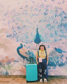 Naomi Watanabecomedian higashiura.naomi@yoshimoto.co.jp