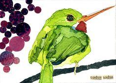 watercolor inspiration - Jamaican Tody | Carol Kroll Art