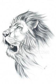 Lion Portrait Original Sketch Lion Original Art by Lunarianart, Lion Portrait Original Sketch Lion Original Art von Lunarianart, £ Animal Sketches, Animal Drawings, Drawing Sketches, Tattoo Drawings, Body Art Tattoos, Mini Tattoos, Lion Sketch, Lion Tattoo Design, Tattoo Designs