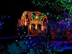 Denver's Zoo Lights safari leads visitors through 38 acres of dazzling displays, including more than 150 animal sculptures that leap across lawns, dangle from trees and appear in the most unexpected places. You'll even hear holiday songs from children's and handbell choirs.