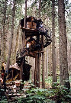 British Columbia multi-level treehouse