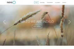 Indigo is a multi-purpose WordPress theme that you can use for business, non-profit, and different type of organization websites.