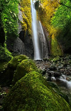 Hidden Fall at Taman Sari, Bandung | West Java - Indonesia    By:  Adil Abdat