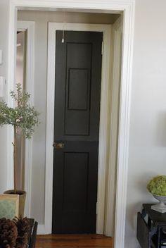 Dark doors with white trim