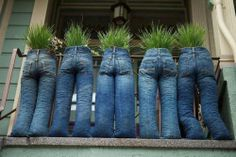 hortas em calças de ganga