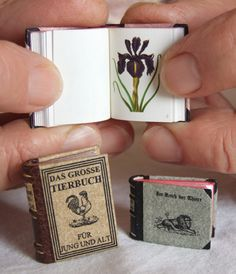 Minibooks of Jozsef Tari !!! He has over 4500 miniature books in his collection and some are more than 100 years old.