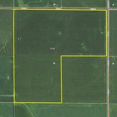 AUCTION - Tuesday, November 22, 2016 at 10 a.m. in Zearing, Iowa 120 acres, m/l, 116.4 est. FSA crop acres. http://www.landbluebook.com/ViewLandDetails.aspx?txtLandId1=cc40e95c-f89c-4608-a436-83e37cc78ae9