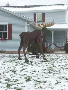 moose yard decor