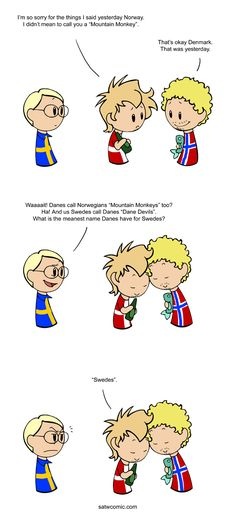 "I was talking with a fellow Dane about the various mean names Scandinavians have given each other, and we realised that for some odd reason the Danes never came up with a name for their nemesis, the Swedes. We therefore came to the conclusion that ""Swedes"" was considered a sufficiently mean word in itself."