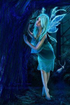 Curious fairy