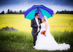 It is always good to have some ideas of indoor photo shoot locations - just in case of a rainy day - here are some options - free and for a fee! Canola Field, Just In Case, Groom, Wedding Photography, Indoor, Photoshoot, Bride, Formal, Wedding Dresses