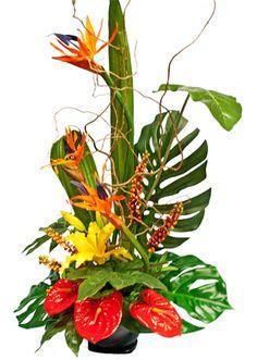 Tropical flower arrangement with birds of paradise.