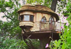 Pistacchi di carta: Le 20 case sull'albero più belle del mondo