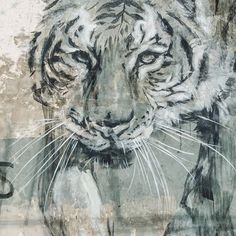 Detail of @faith47 Tigers mural in Downtown  #eltipoese #justkidsofficial #unexpectedfs #tiger #mural #fortsmith #arkansas #faith47 #royalspirit