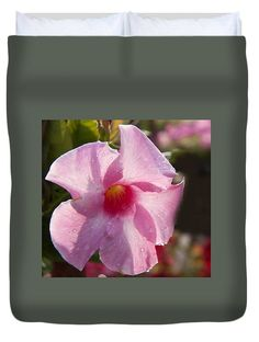 Flowers Duvet Cover featuring the photograph Light Pink by Janis Kirstein