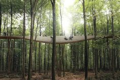 Running through a preserved forest in Denmark, the Camp Adventure Park gives you a bird's eye view of the rural landscape. The walkway starts. Sustainable Architecture, Landscape Architecture, Landscape Design, Canopy Architecture, Landscape Fabric, Architecture Lyon, Amphitheater Architecture, Natural Architecture, Classical Architecture