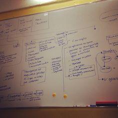 Conceptualizando marca para empresa en construccion