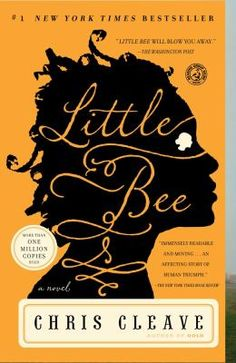 "Chris Cleave's ""Little Bee.""  A deeply moving book about sadness, how humans deal with horrors large and small, and the immense differences in way of life between the third world and the first world.  What would you give of yourself to help a stranger?  In the end, would it matter?  Complex characters, stirring tale."