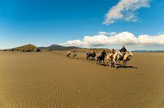 Cabalgata en Peninsula Mitre, Tierra del Fuego, Argentina | Lugares de Viaje
