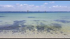 Great place to snorkel in Pensacola, Florida - Pensacola Bay Snorkel Reef - Park West