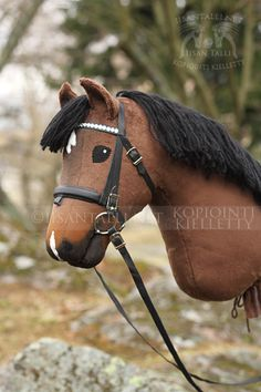 Stick Horses, Hobby Horse, Horse Photography, Anastasia, Barn, Animals, Craft, Most Beautiful Horses, Hobbies