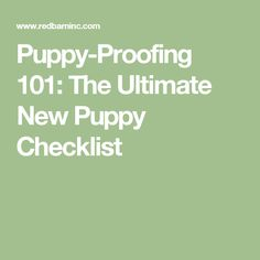 Puppy-Proofing 101: The Ultimate New Puppy Checklist