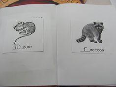 My Little Book of Animals that Hibernate Mini-Book