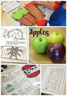 First grade apple themed learning: apple math, apple science, and apple literature