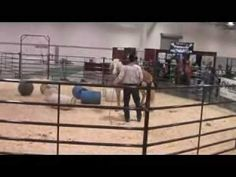 Desensitizing demonstration of a therapeutic riding horse - NAHF 2008
