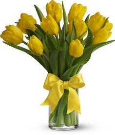 Sunny Yellow Tulips,Sunny yellow tulips are a sure sign of spring. Even if the weather is not cooperating, you can be sure the person who receives this bright bouquet will feel the warmth of your message.