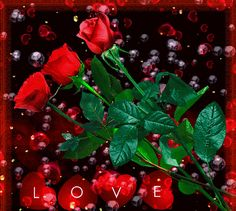 GIFS HERMOSOS: FLORES ENCONTRADAS EN LA WEB Pretty Gif, Beautiful Gif, Beautiful Roses, Valentines Gif, Valentine Day Love, Cool Pictures Of Nature, Beautiful Pictures, Hearts And Roses, Red Roses