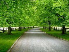 1000+ ideas about Long Driveways on Pinterest | Asphalt driveway ...