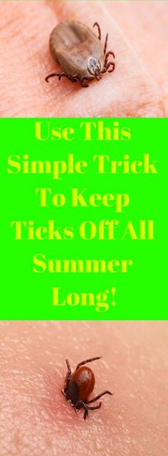 Use This Simple Trick To Keep Ticks Off All Summer Long! Herbal Remedies, Home Remedies, Natural Remedies, Survival Tips, Survival Skills, Natural Bug Spray, Esential Oils, Daily Meditation, Great Appetizers