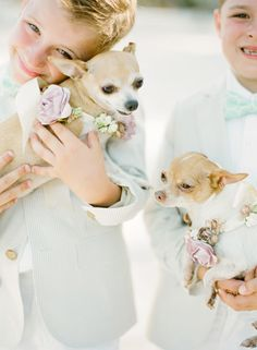 Dogs ring bearers! Too cute! {Photo by KT Merry via Project Wedding}