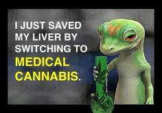 Weed is safer than alcohol! #weedmemes #marijuana #cannabis #stoners #mmj #medicalmarijuana