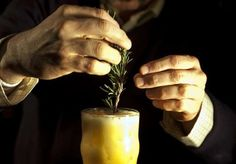 Under new food safety law, bartenders have to wear gloves