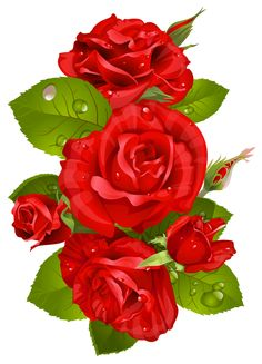 roses 1920x1408 clip art everyday for cards scrapbooking picture rh pinterest com