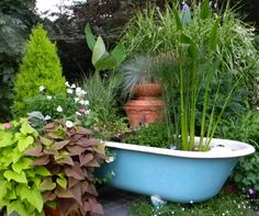 ol' tub in garden...great for container gardening...would also make a good pond and water fountain