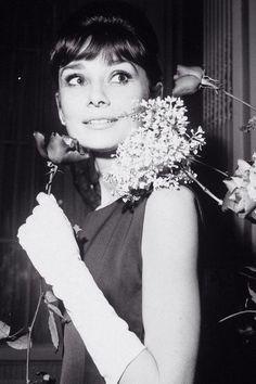 Timeless Audrey Hepburn/Одри Хепберн's photos – 16,527 photos   VK