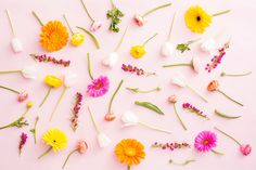 Desktop-FloralMix.jpg 2,400×1,600 pixels