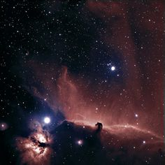 The Horse Head nebula in Orion - one of my favourite images