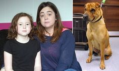 Woman who outraged world when she abandoned Kai the dog outside train station doesn't see what she did wrong  http://www.dailymail.co.uk/news/article-2903448/Pictured-Woman-left-Kai-Shar-Pei-tied-outside-train-station-claims-did-WRONG.html