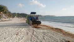 México destina recursos para la limpieza de playas - ReporteLobby